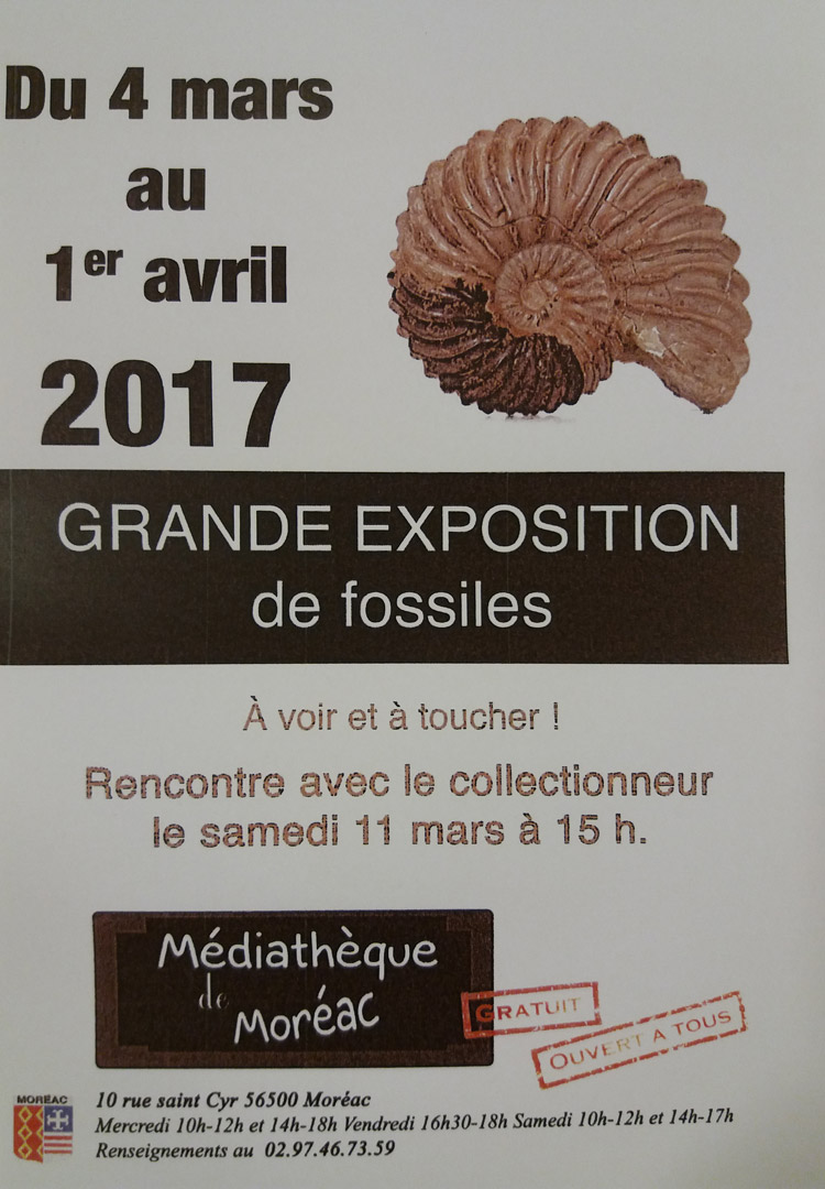 expo_fossiles_01